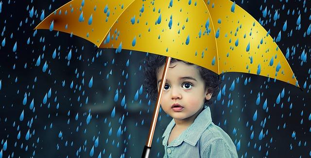 Fachkurs Kindes- und Erwachsenenschutzrecht - Online